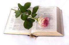 bible-999132_1920.jpg